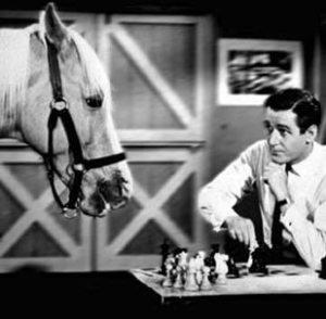 mister-ed-chess